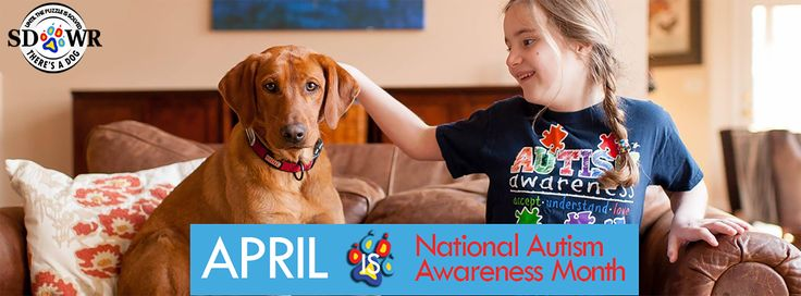 SDWR's autism dogs are the best dogs for kids with autism. Read to learn how an Autism Service Dog can create miracles in the life of an Autistic child.