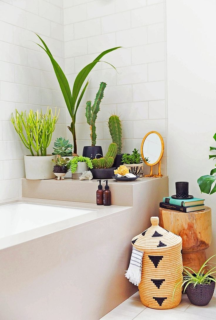 Shower plants! They are ALL the rage, and did you know it's become one of the #1 searched things on pinterest? We love this plant shrine at the end of the bath!