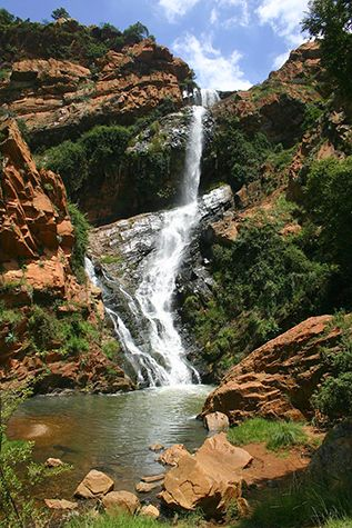 Witpoortjie Falls at the Walter Sisulu National Botanical Garden (Photograph by onlyinsouthafrica, Flickr)