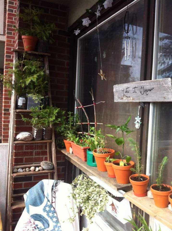 I found this great ladder that fills this small corner of my balcony garden just perfect