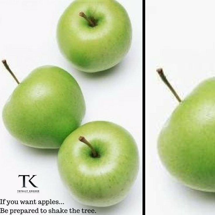 Do you want the apple?  #TotallyKosher #WednesdayWisdom #Foodie #Apples