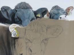 Image result for michael freeman pastel artist