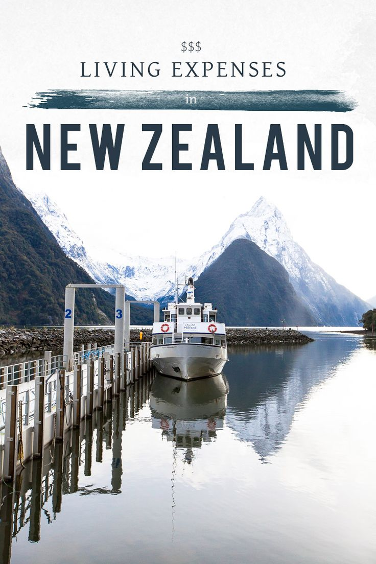 pin now read later Living Expenses in New Zealand - Living in Another Language #newzealand #newzealandtips