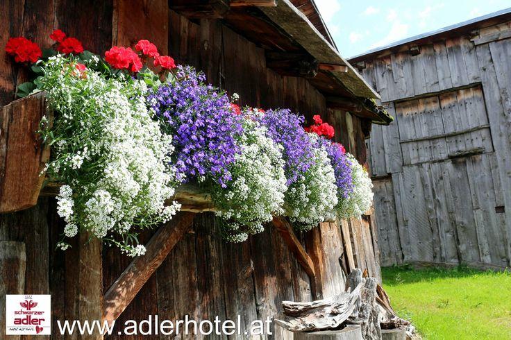 Altertümliche Bauernhäuser