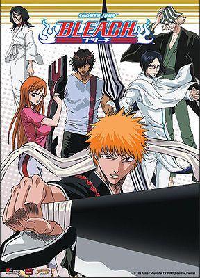 Bleach Ichigo Team Group Wall Scroll Anime GE 9712 NEW Rukia Orihimi Sado Uryu