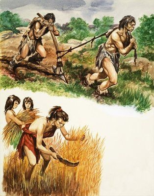 Stone Age farming Wall Art & Canvas Prints by Peter Jackson