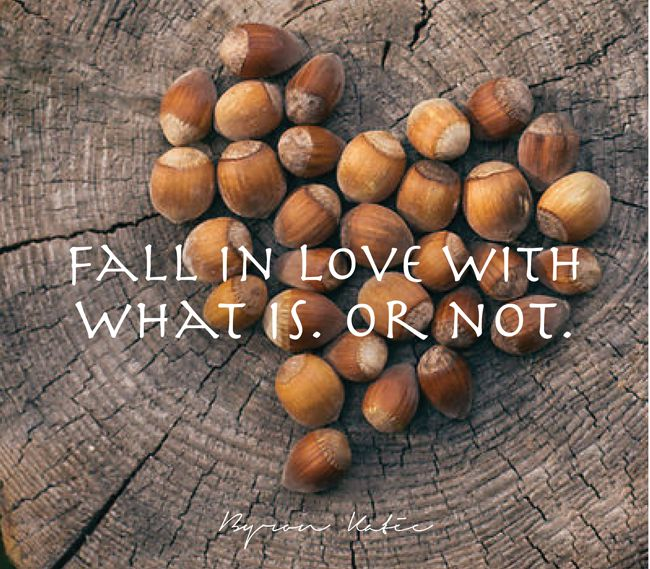 fall in love with what is. or not.