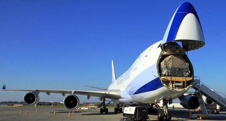 Curiosidades :: Jumbos de Boeing aviones de carga cabina nariz