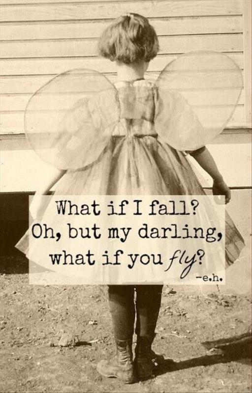 Fly darling fly