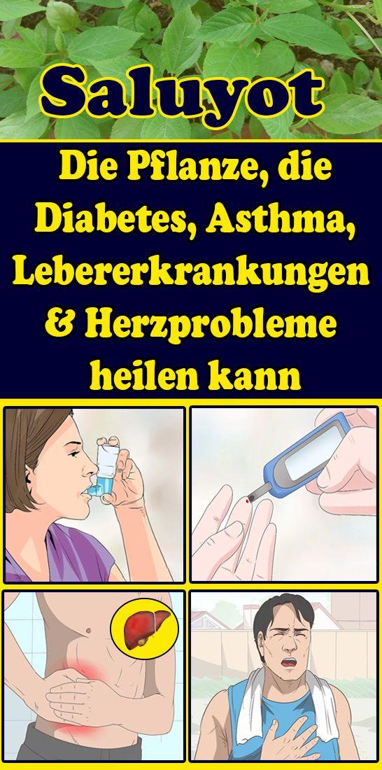 Saluyot: Die Pflanze, die Diabetes, Asthma, Lebererkrankungen und Herzprobleme heilen kann – Sigi Sofia