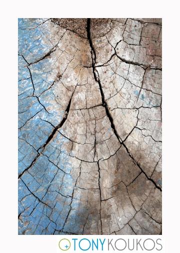 wood, trunk rings, grooves, paint, brushstrokes, dodecanese islands, greece, Tony Koukos, Koukos