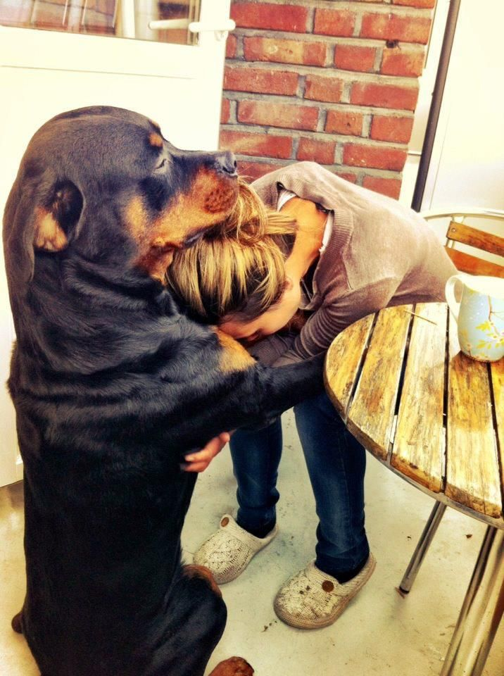 There, there human.