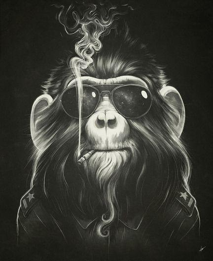 Lukas Brezak: Monkey Rooms, Black And White, Illustrations, Art Prints, Poster, Wound Brezak, Art Pictures, Smoke Ems, Smoke Monkey