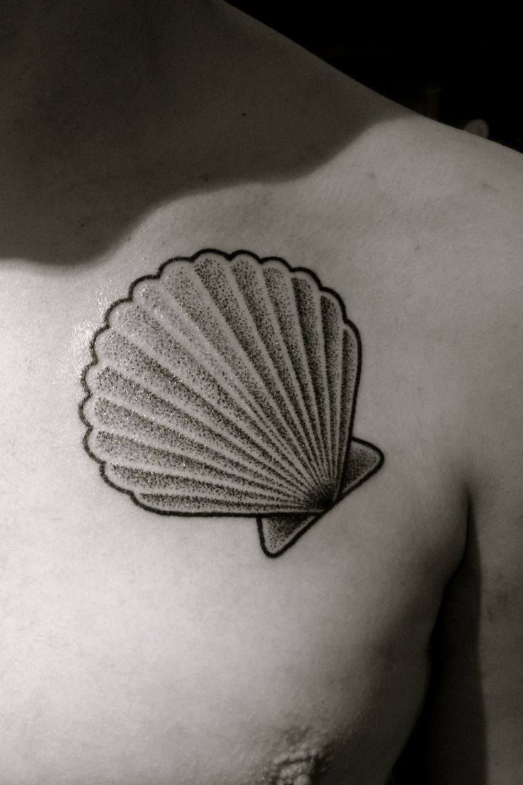 7 best seashell tattoos images on pinterest drawings for Seashell tattoo meaning