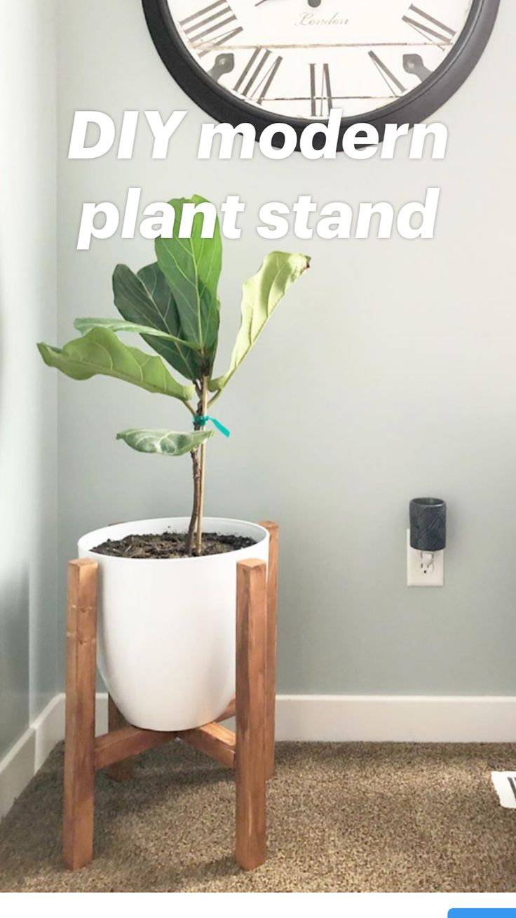 Modern Plant Stand, Wood Plant Stand, Tall Plant Stand Indoor, Indoor Plant Decor, Small Plant Stand, Best Indoor Plants, Indoor Planters, Diy Crafts For Home Decor, Diy Home Projects Easy