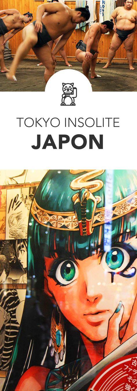 Bar à chouette, entrainement de #sumo, mariage traditionnel japonais, essayer le #cosplay, dinosaures taille réelle… Les bonnes idées pour découvrir #Tokyo de manière insolite ! Find cheap flights at best prices : http://jet-tickets.com/?marker=126022