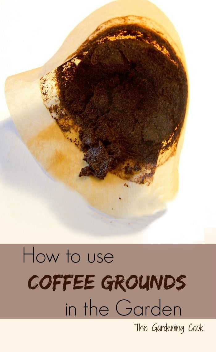 Don 39 T Throw Those Used Coffee Grounds Away See How To Use