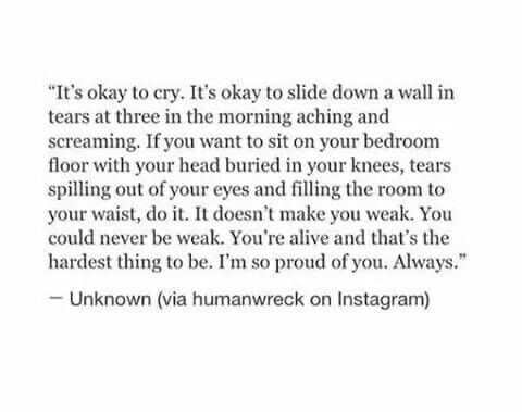And it's okay. It will all be okay. Let it out now and pick yourself back up. You've been here before, Pey. You will get through this. One day at a time. Take it slow.