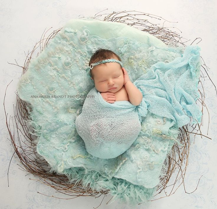 Newborn photography props nest of curls blanket felted blanket ababa baby props www