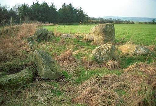 Little Meg Stone Circle. Pic F13P23.