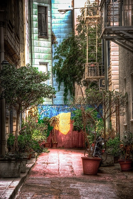 Urban garden of eden (colorful alley in San Francisco )  HDR by fliptopheed, via Flickr