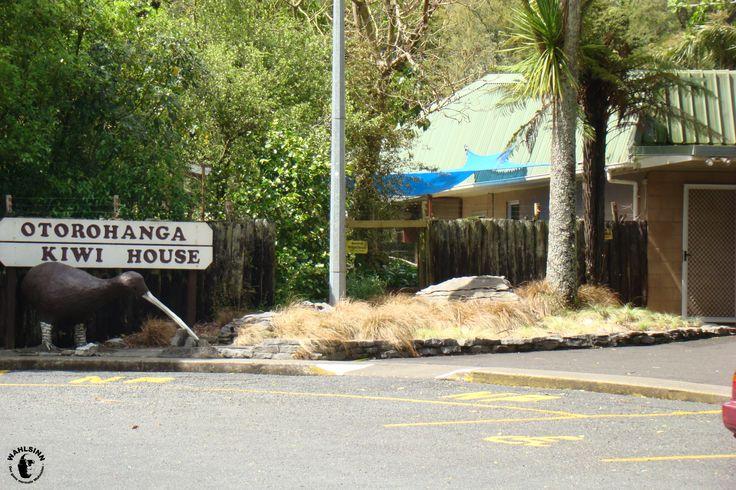 Neuseeland - Kiwi House