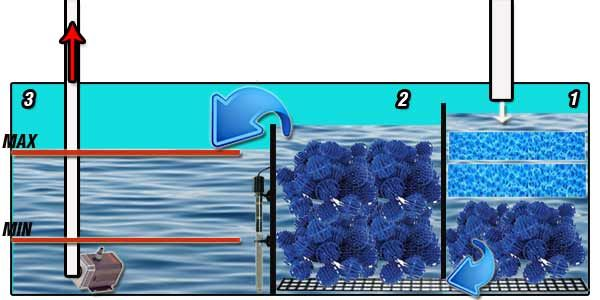 How a sump filter works aquarium set up ideas for How to set up a fish tank filter