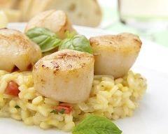 Noix de Saint-Jacques à la plancha, risotto à l'huile de truffe et wok de légumes du sud (facile, rapide) - Une recette CuisineAZ