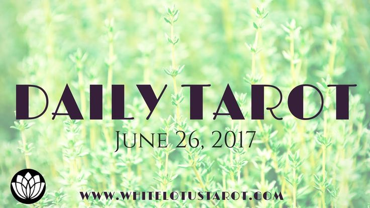 Daily #Tarot Reading June 26, 2017 an Intuitive Life Coaching by White Lo...