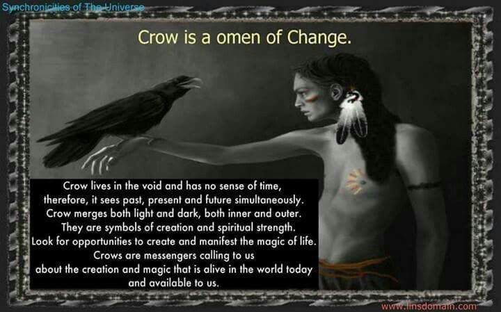 Crow means change. -- funny how I've always had a strong connection to crows. It all makes sense. -Lindsay <3