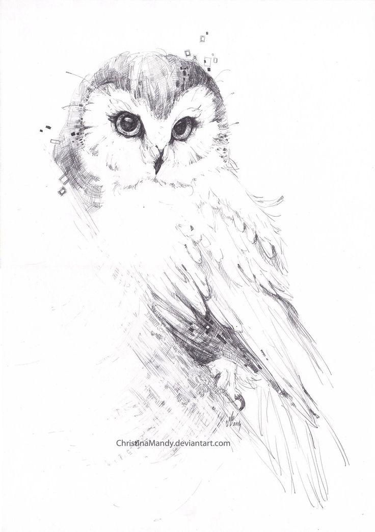 Owl... by ChristinaMandy.deviantart.com on @DeviantArt