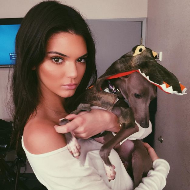 Apply your concealer with a fluffy, round eye shadow brush. | 11 Easy Tricks We Learned From Kendall Jenner's Makeup Artist