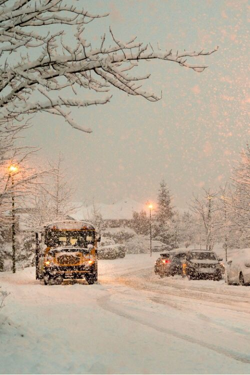 let it snow! school will still be open, in the north anyway -
