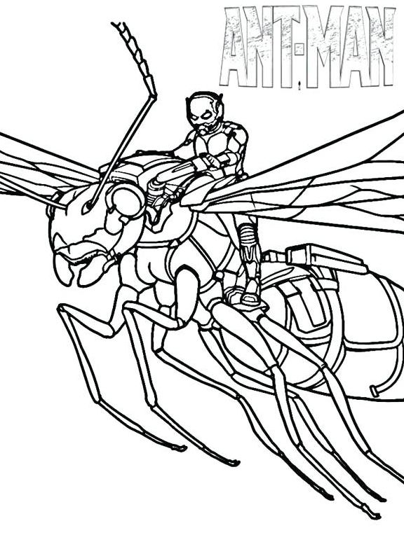 Ant Man Coloring Pages Coloring Pages Avengers Coloring Pages