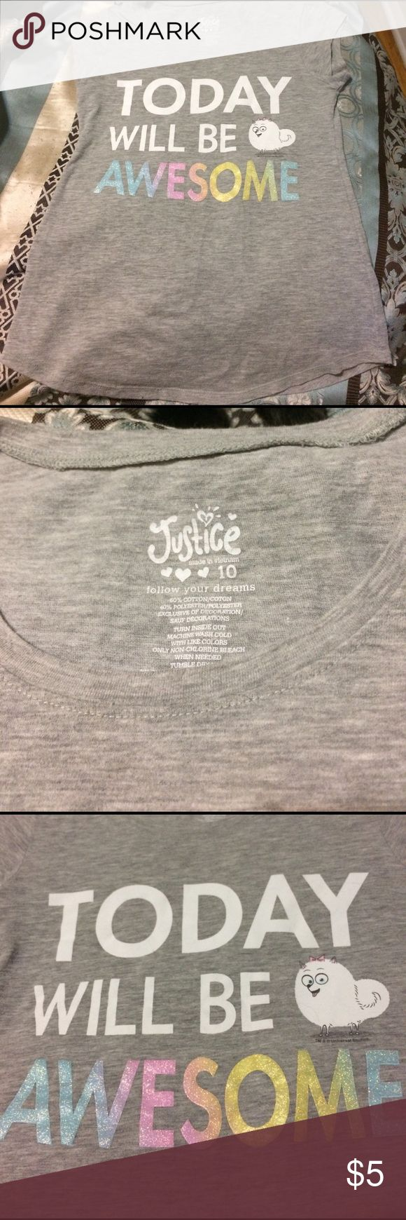 Justice shirt Girls Justice shirt with Secret Life of Pets picture.  Good used condition! No tears or stains. Shirts & Tops