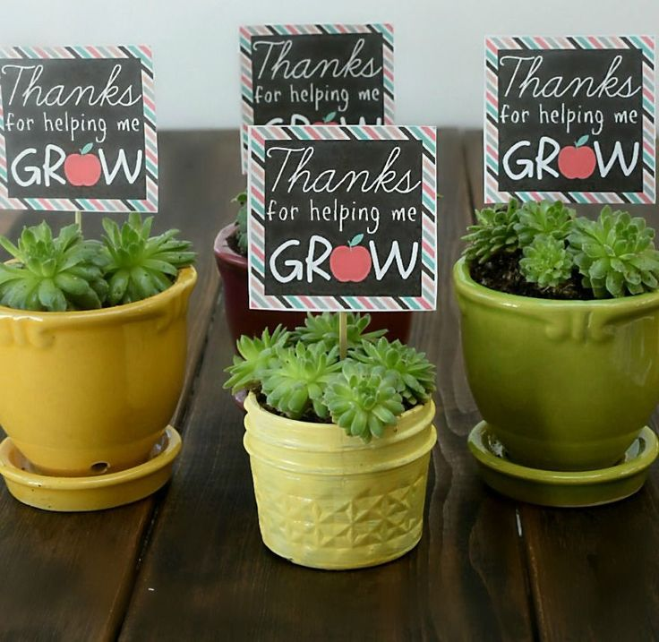 "A succulent plant with a printable label, ""Thanks for helping me grow."""