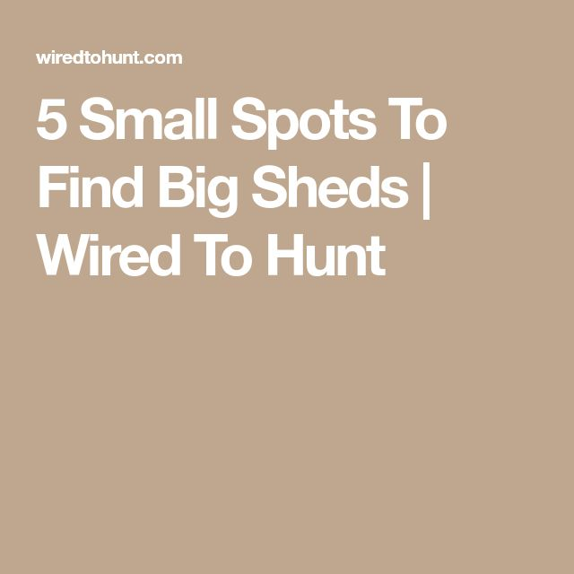 5 Small Spots To Find Big Sheds | Wired To Hunt