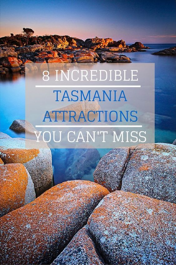 8 Incredible Tasmania Attractions You Can't Miss {Big World Small Pockets}