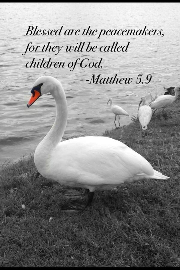 Peacemakers... Children of God.  #Bible #Scripture #Peace #quotes #Encouragement #NBTT http://nothingbutthetruth.org/