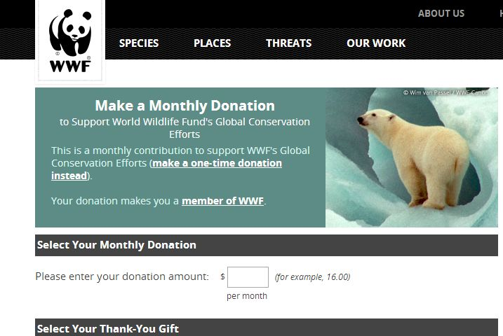 CaseStudy World Wildlife Fund  for their monthly donation