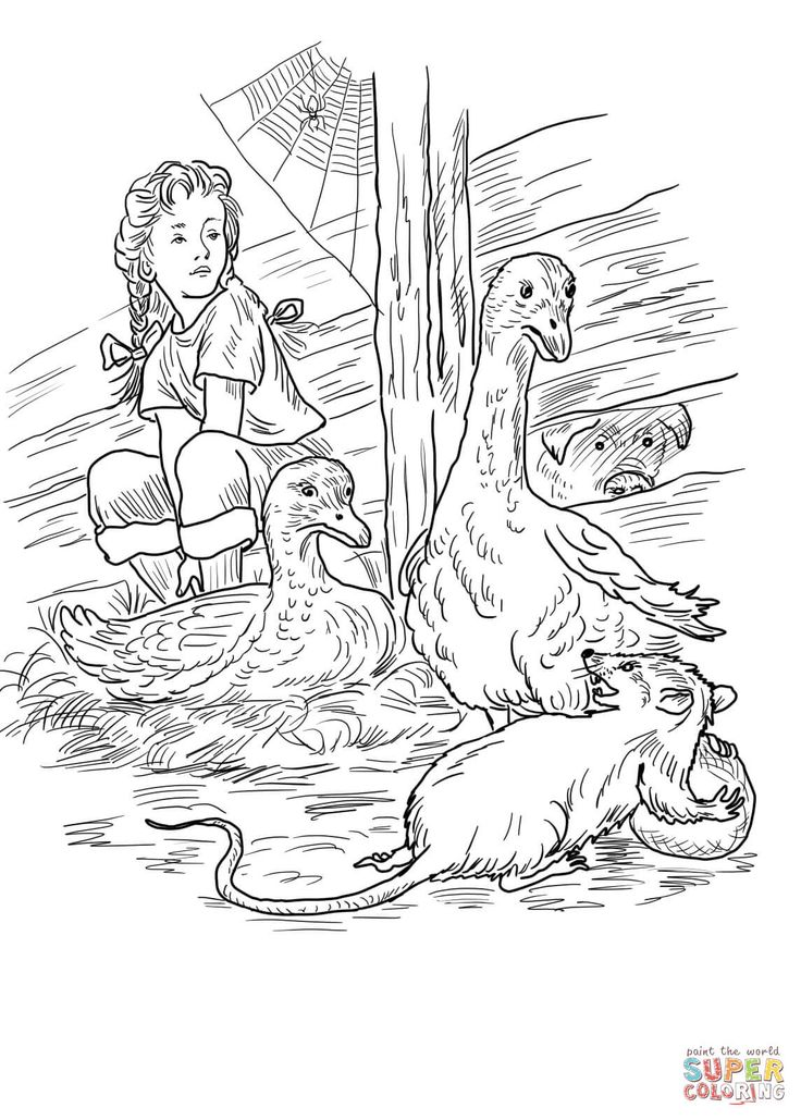 33 Best Coloring Pages Charlotte S Web Images On