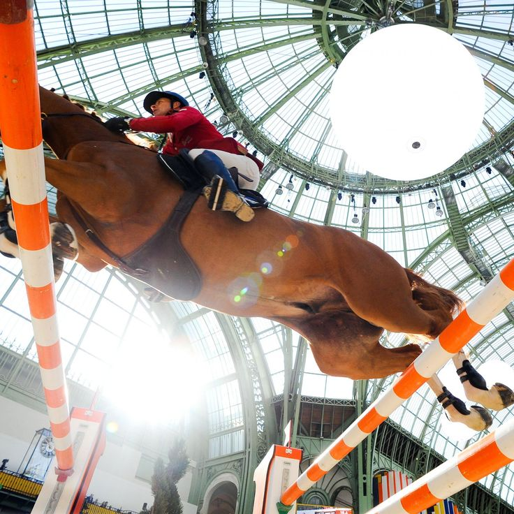Show Jumping World Cup Final 2014: Daily Results and Recap