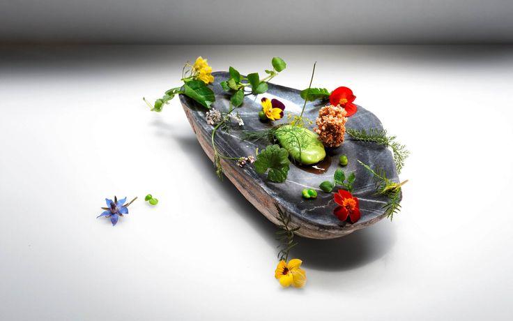 fdarba, molecular, nature, amuse bouche, cream, crunchy, flowers, plants, Vendôme, Joachim Wissler, Germany, green, picture