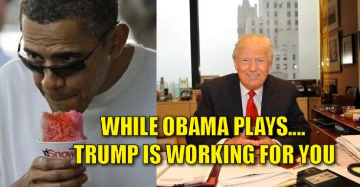 While Obama Wines, Dines, and Golfs, Trump is BUSTING ASS for the American People – TruthFeed  12/23/16