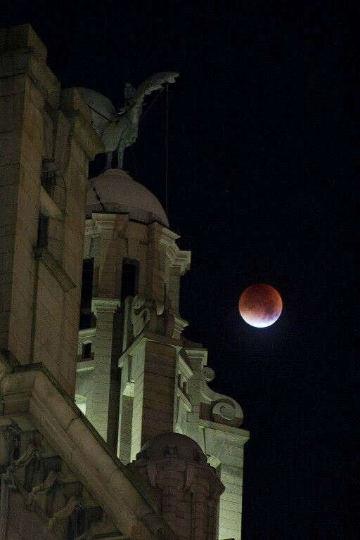 Blood moon over liver buildings