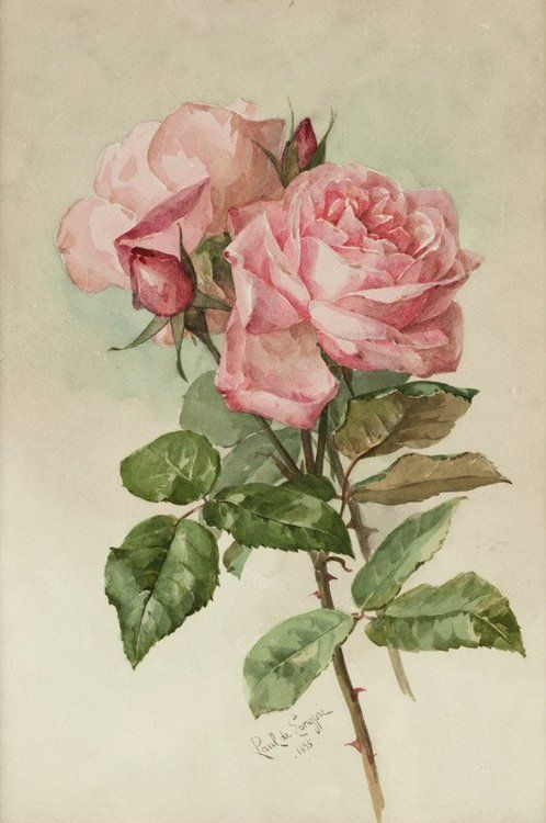 Paul de Longpré (1855–1911) - Pink roses, watercolor, 34,3 x 24,1 cm. 1895. · #Roses #Art #Tumblr