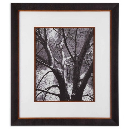 I pinned this Classic Birch Framed Print from the Uttermost event at Joss and Main!  2 please!