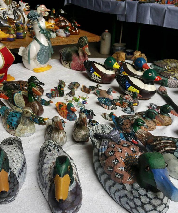 Quack. #ente #ducks #woodenduck #Flohmarkt #brocante #estatesale #germany #antik #antique #collectibles #mainz #mainzhechtsheim