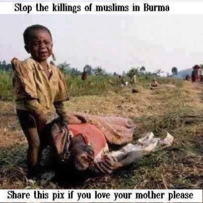Stop Genocide of Muslims in Burma. It would probably help if this topic was covered a bit more by the mainstream media.
