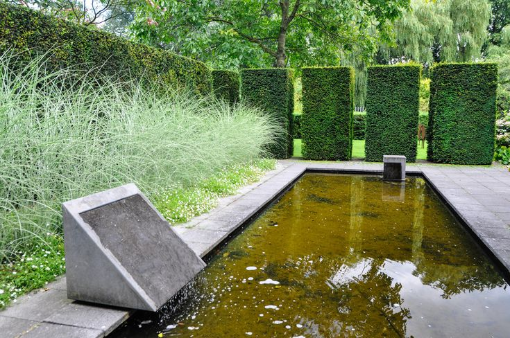 Reflecting pool taxus hedging and miscanthus 39 morning for Garden reflecting pool